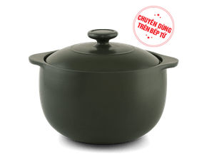 Healthy Vesta 3.0L pot (use on induction cooker)
